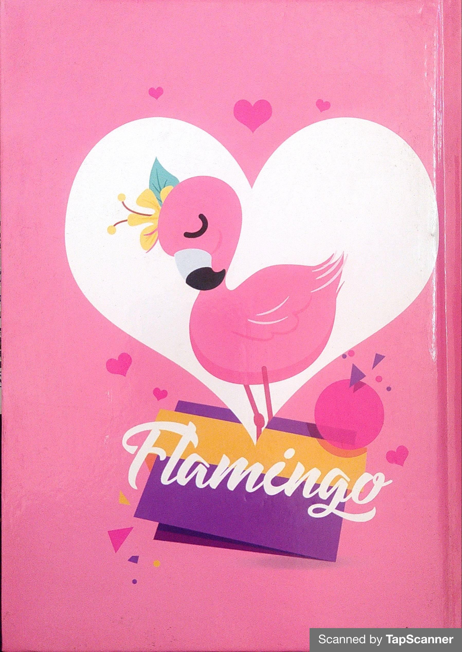 Flamingo (notebook)